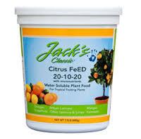 Citrus Feed