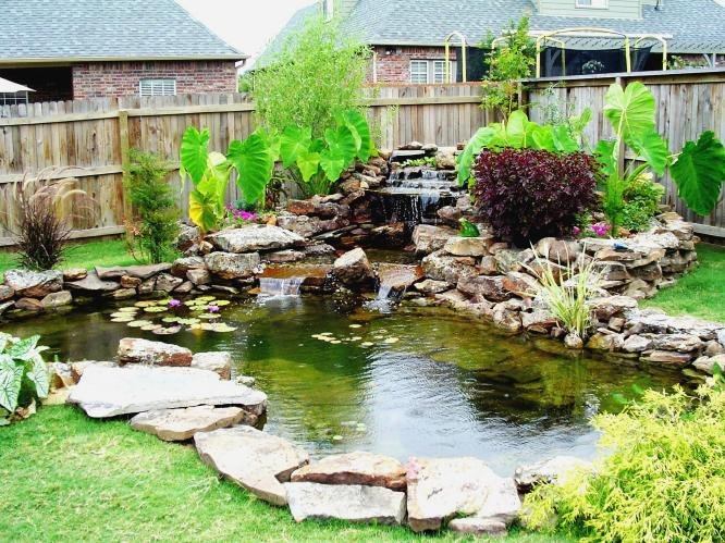 A B Seed Farmers Market Garden Center Blog Archive Its Time To Winterize Your Pond